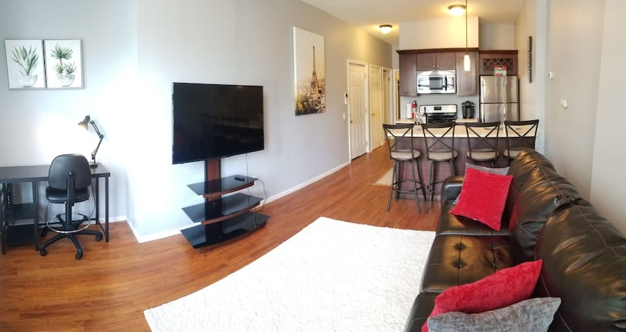 Beautiful New Haven apartment near Wooster Square!
