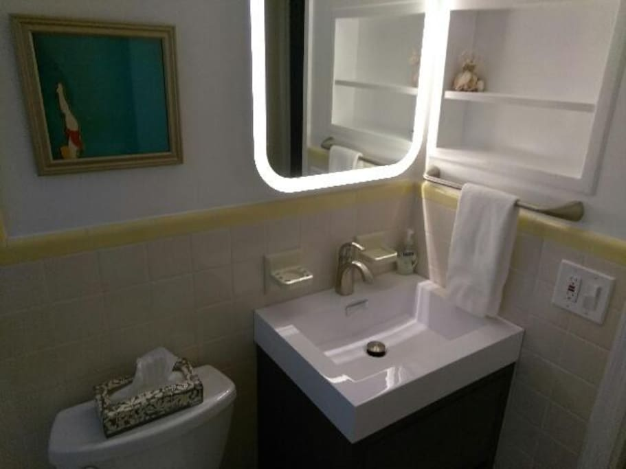 LED lighted bathroom mirror