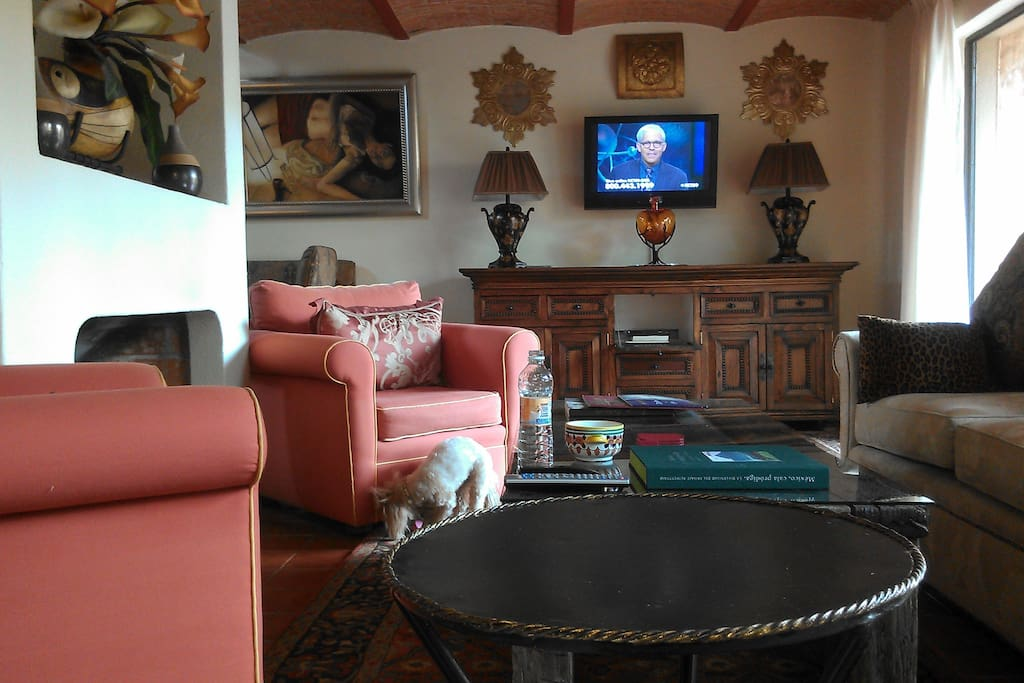 Enjoy Satelitte TV surrounded by beautiful art and handcrafted San Miguel de Allende furnishings.