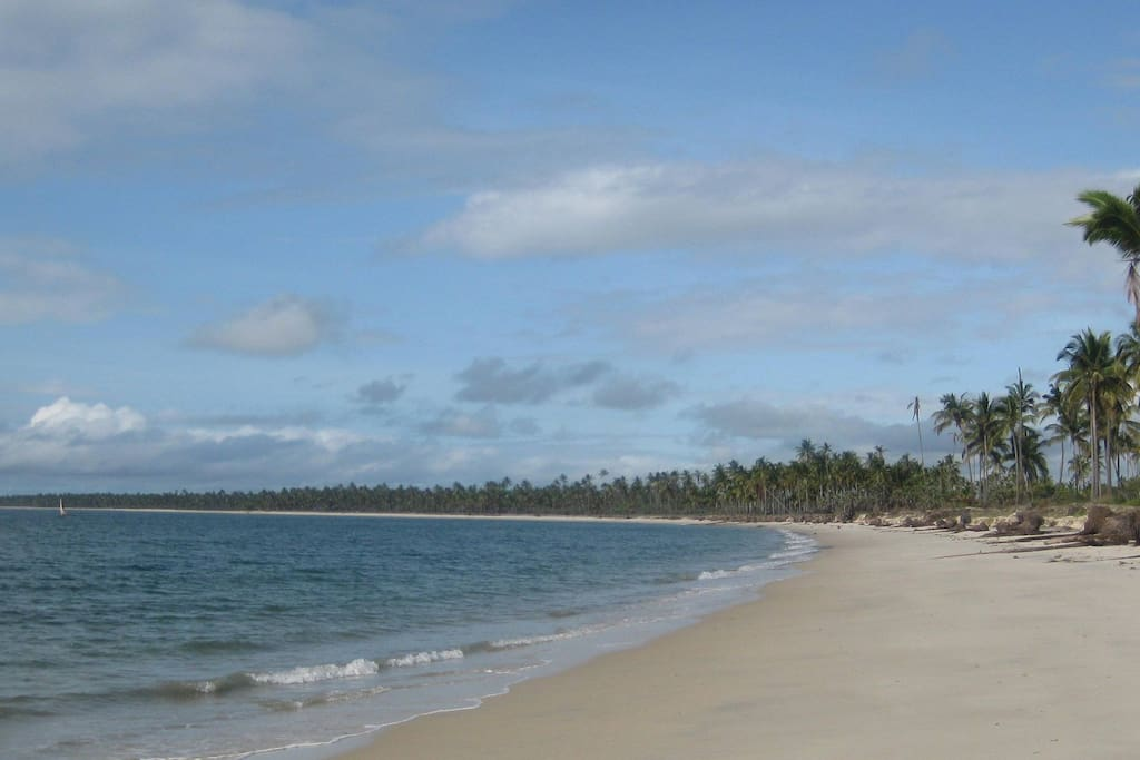 Long white beach is inviting you to take strolls and explore the treasure of the Ocean