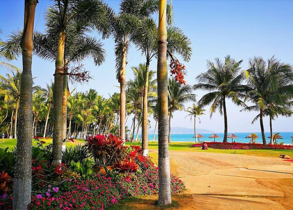 小区美丽的私属海滩