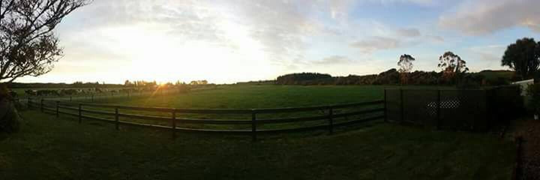 View of green fields from loungeroom window.