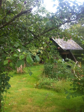 B&B - Brittany meadows  - Montreuil-sur-Ille - Dom