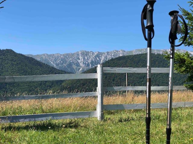 Mountains Calling-Pestera