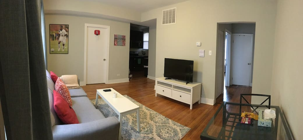 Entire Apartment Near (Francisco) Brown Line Train