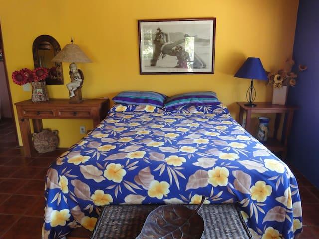 Casa Pacifica B&B Blue Hawaii Suite - Chacala - Penzion (B&B)