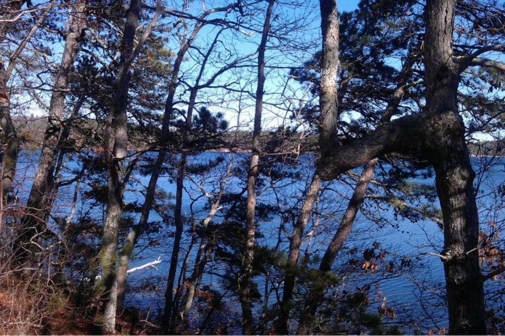 Ruth's pond at Nickerson State Park - short bike ride or 15 minute walk from the house