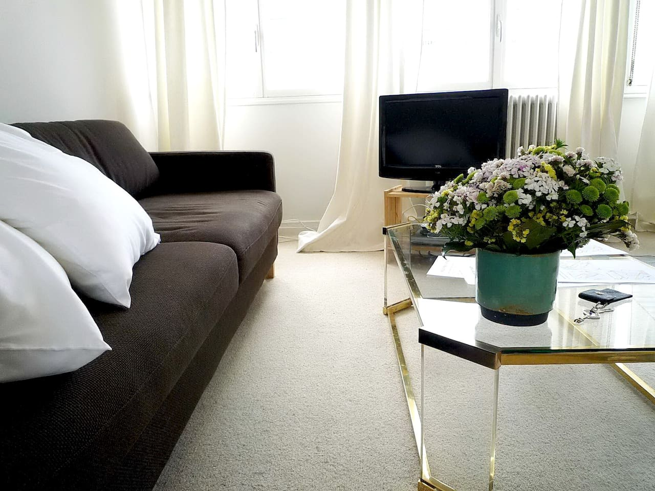 one of the comfortable sofa beds, TV... and flowers:)