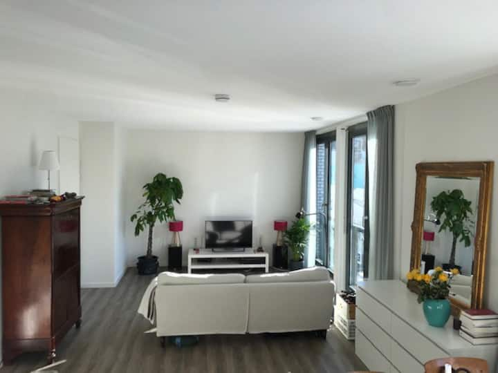Centrally located light apartment, own parking