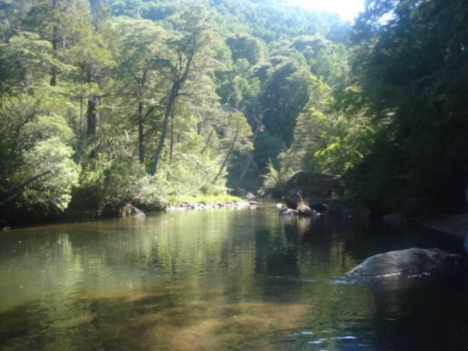 Pozón  para baño y pesca deportiva dentro de la propiedad.  Río Picoiquén.