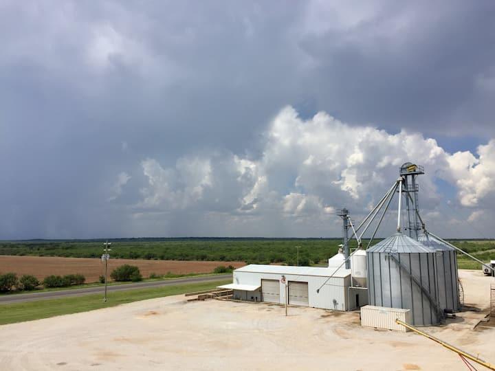 Seed-Tex Grain Elevator at True, Texas