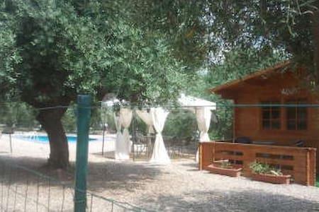 Bungalow 4 p private swimming pool - Riudoms