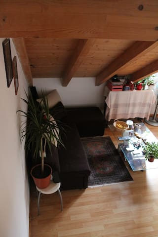 the sofa is in the living area/kitchen