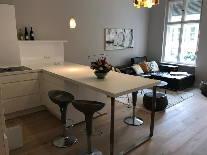 Moderne Altbauwohnung im Herzen Potsdams