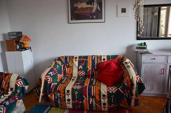 Cosy room, and comfortable couch :) - Varsòvia - Pis