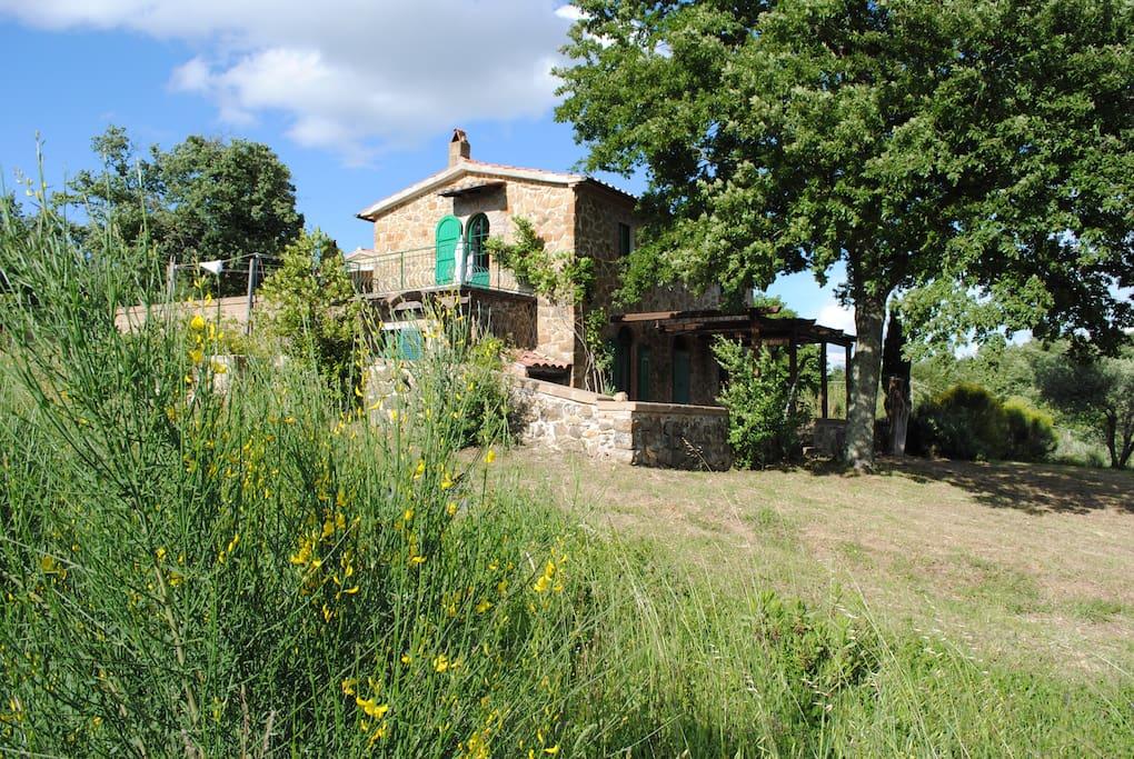 Toscanahäusl
