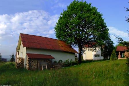 Casa Andrei in Bucovina's Mountains Vatra Dornei