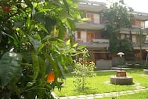our beautiful private garden...the apt is the one at the second floor!