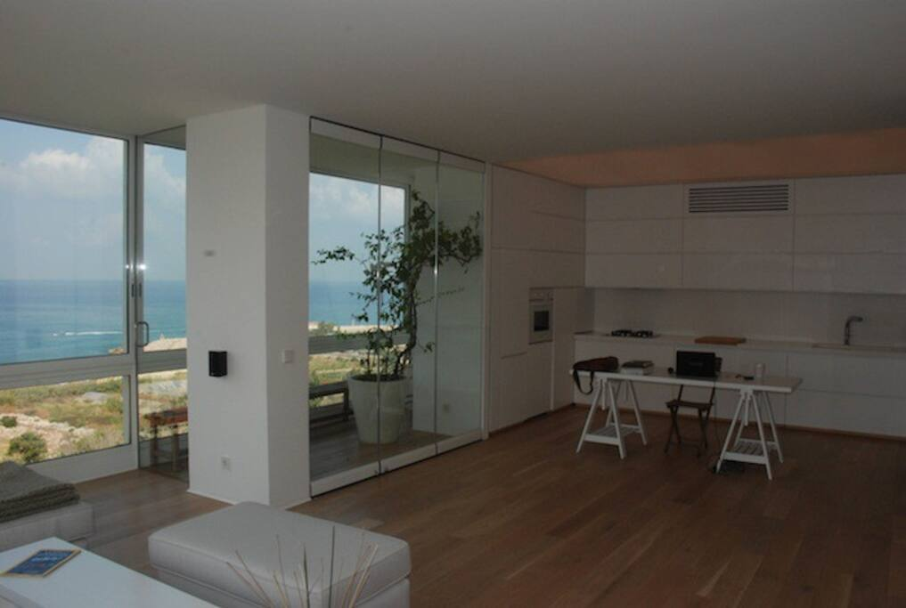 Balcony & Kitchen area ( Hidden large fridge + freezer)