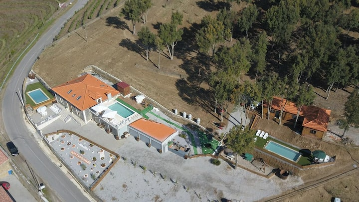 Beautiful home with pool and views over the Douro