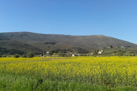 Appartamento in Villa  - Calenzano