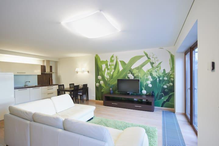 Luxury apartment in city centre! - Vilnius - Apartment