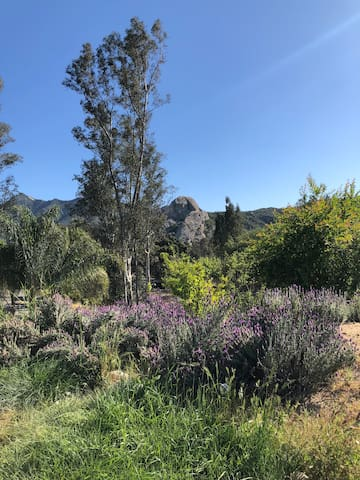 Large family home in Old Canyon Topanga