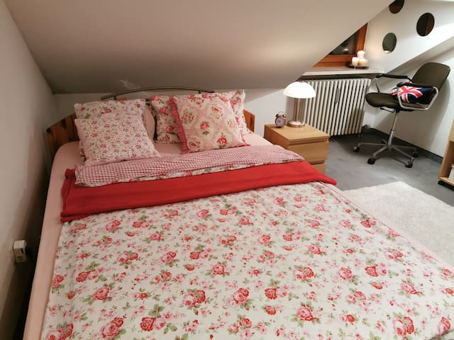Cosy and cheap guest room close to the centre