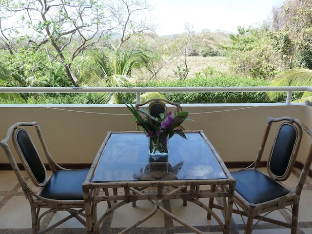 BEST DEAL IN SAMARA, GUANACASTE, CR. Special  Rate