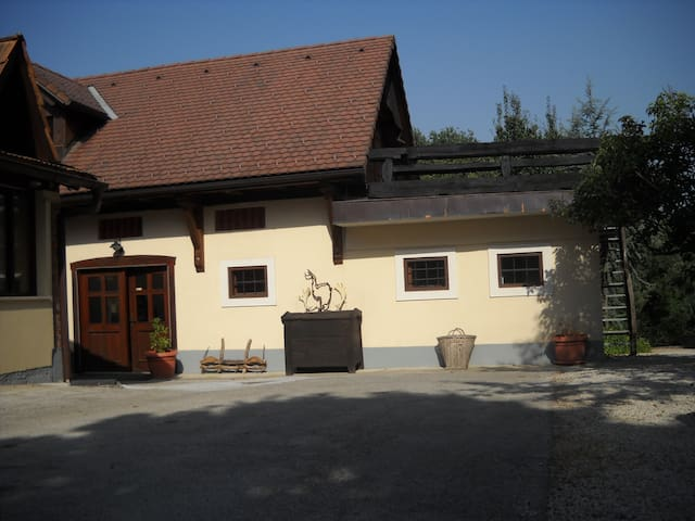 Heaven on Earth  - Brežice - 25 km from Zagreb (Croatia) - Apartment