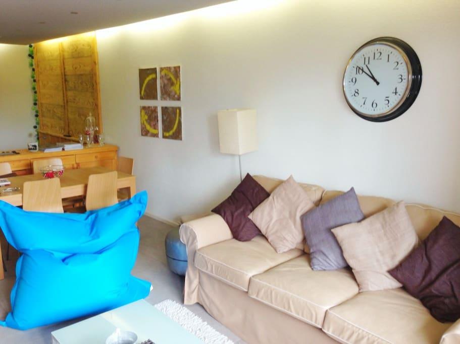 coin salon avec TV et DVD(canapé-lit double)