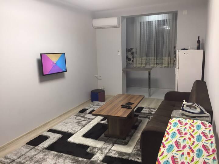 apartment dlia semia