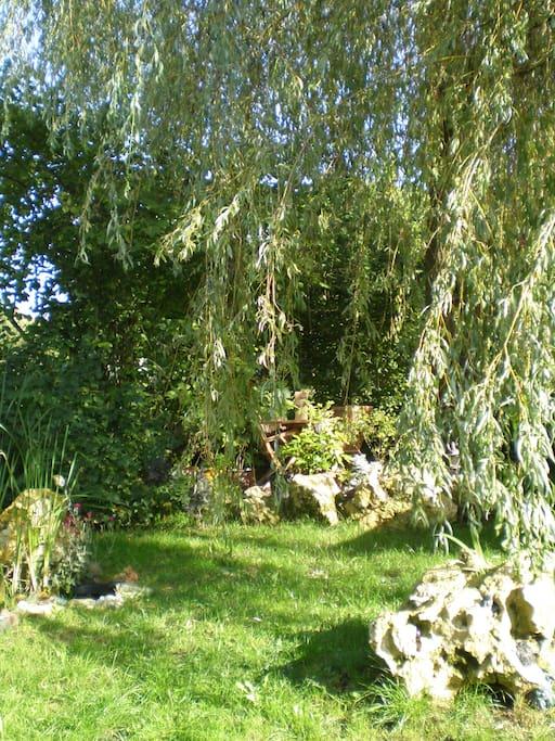 Weide, Wasser und wenn man genau lauscht, hört man die Elfen wispern ...