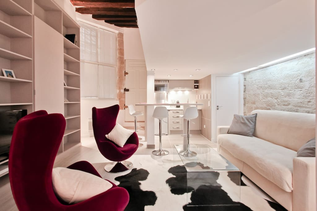 Exceptional 1 bedroom Le Marais