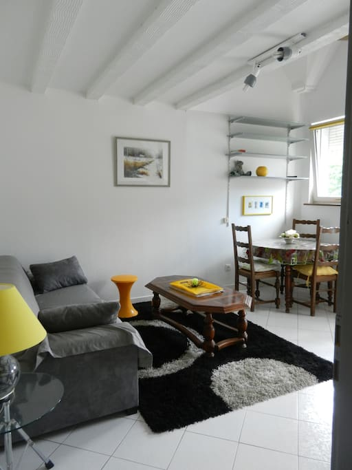 Appartement colmar apartments for rent in horbourg wihr for Appartement atypique colmar