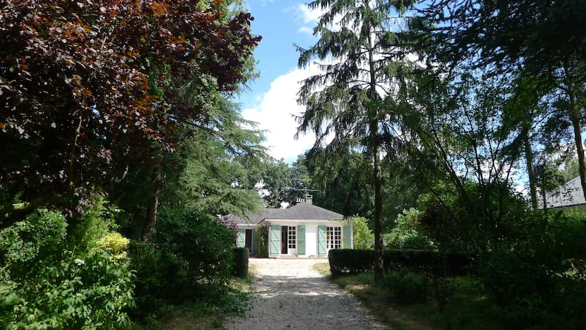 Garden Home - Angers & Loire Valley - La Chapelle-sur-Oudon - Hus