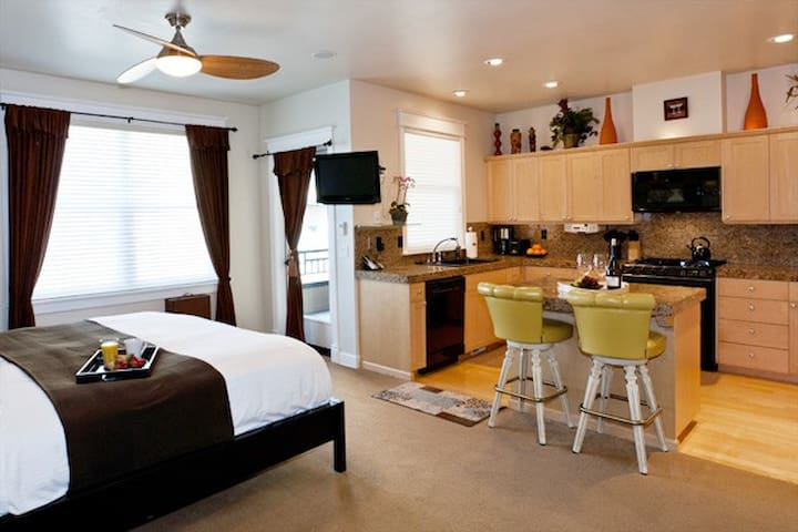 Luxury King Studio with Full Kitchen C2
