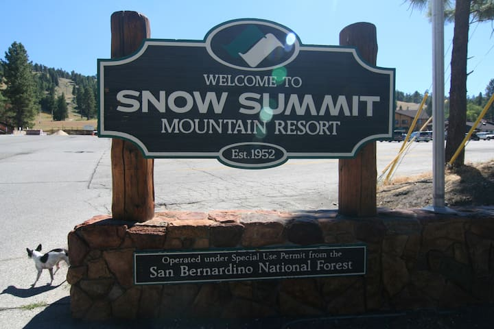 Ski In, Ski Out to Snow Summit!!