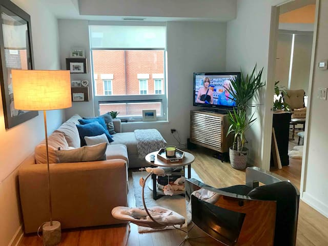 Boutique Condo steps to Casa Loma parking incl