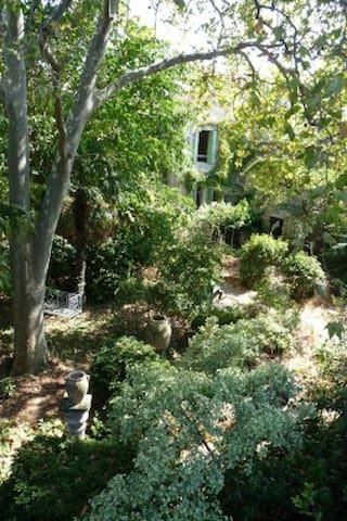 house in a quiet garden