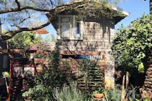 the garden house is securely fenced in. it has two studios with their own private decks. They both look into the garden of our Craftsman style house