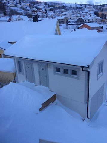 Let it snow, let it snow. Our gardenhouse in ferbruary