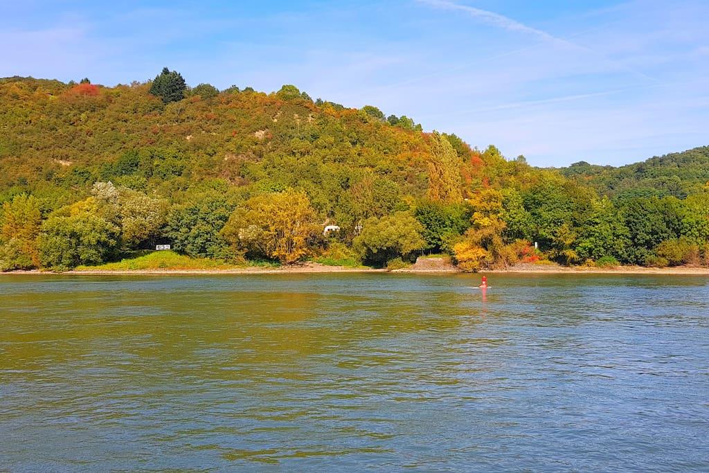 Das Haus in der Bildmitte: vom Rhein aus gesehen.