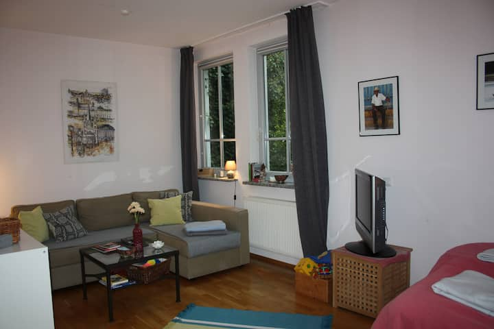 Old town apartment close to castle and cathedral