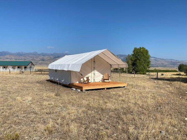 Glamping Tent neat Yellowstone Park