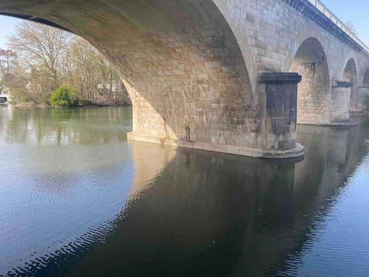 Bord du Loiret 100metres du centre olivet