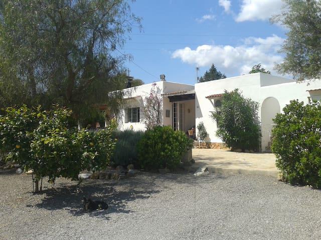 Villa in Santa Eulalia - Sant Carles de Peralta - Dům