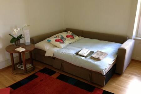 chambre double cadre enchanteur - Peseux - Bed & Breakfast