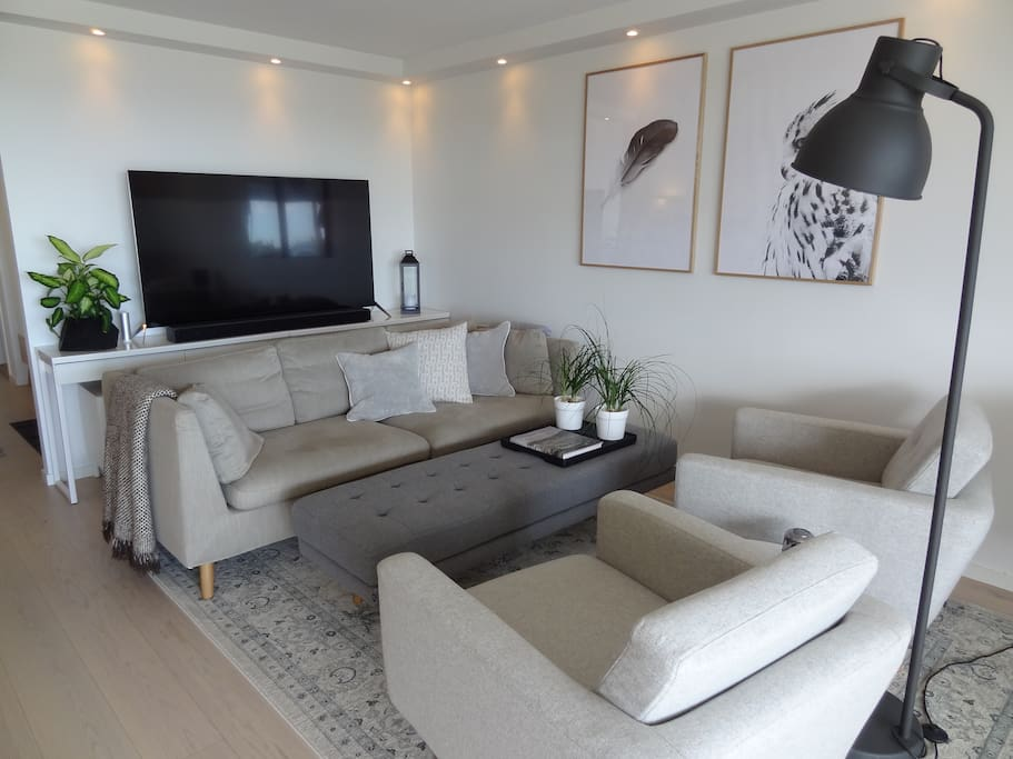 The sofa and entertainment area