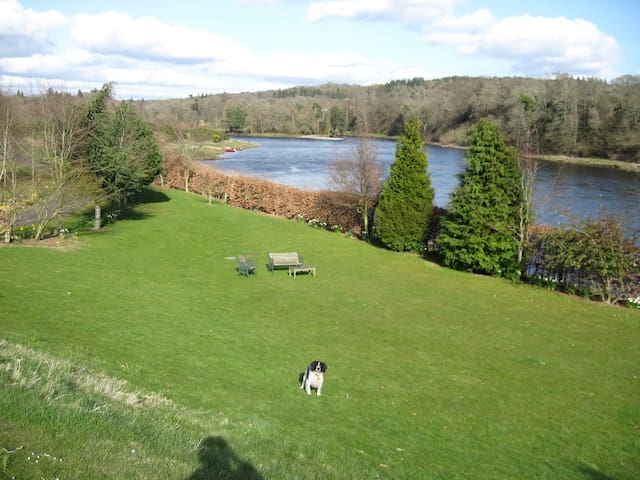 A beautiful lodge on the River Tay - Stanley - House